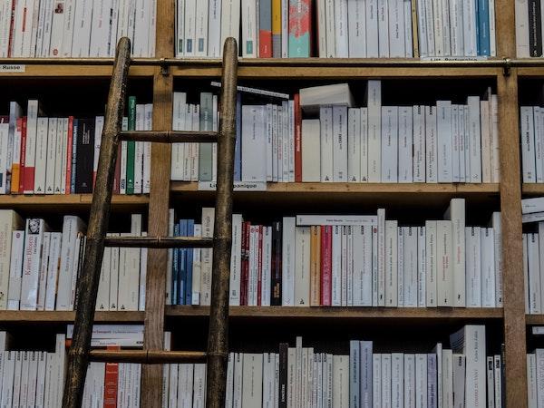 image for Bibliotheken pasten dienstverlening in coronatijd snel aan image